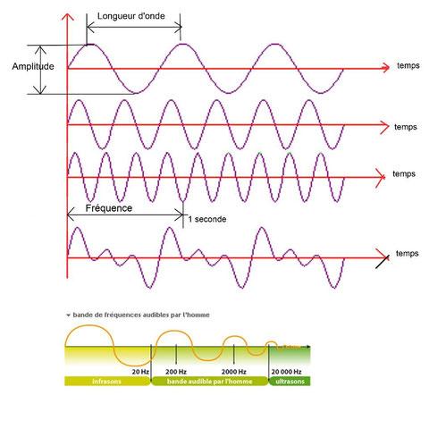 Niveau vibratoire