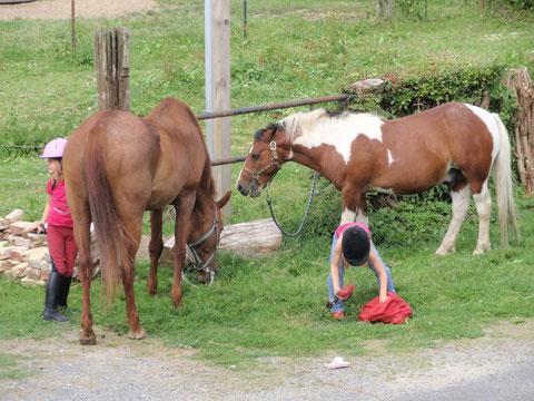 Départ de randonnée à cheval, depuis le gîte du cheval de renfort, à OHIS, aisne.