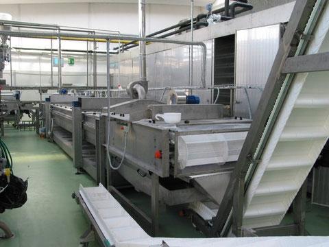 Pinturas industriales para el sector alimentario en Barcelona aplicados por nuestra empresa de pinturas industriales