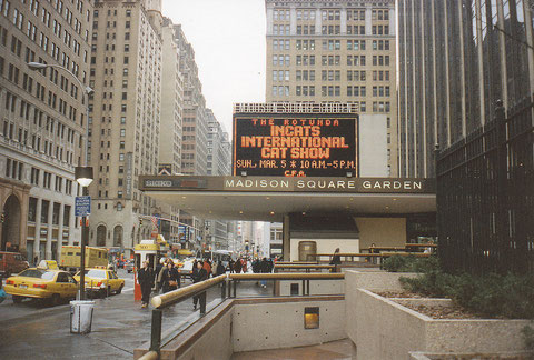 Madison Square Garden, New York, USA, 1995