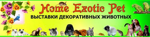 выставки-животных