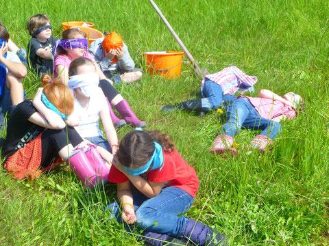 Vor Ort auf der Wiese mussten die Kinder alle ihre Sinne einsetzen. Mit verbundenen Augen lagen sie in der Wiese und lauschten nach Geräuschen.
