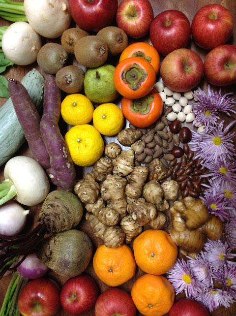 江田島酵素で使う、秋の酵素材料の一例、 写真にはありませんが、 穀類も入れます。 発酵促進材として、安全な採取地から採った108種類以上の野草酵素を使います。