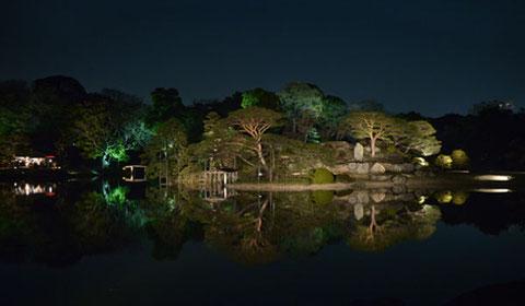 ライトアップされた六義園の大名庭園