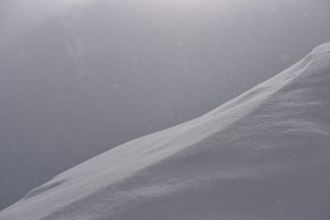 1er avril sous la neige...