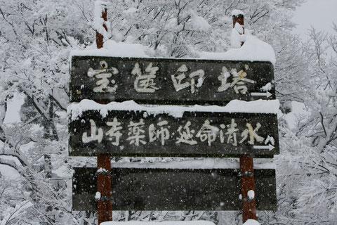 寒そうに客を待つ 大雪の定例撮影行の帰り道車内より撮る