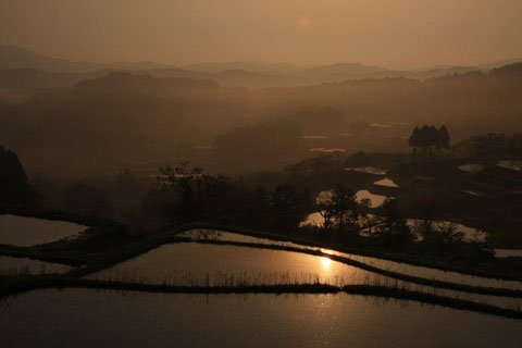 大月 靄う棚田 朝陽も包む