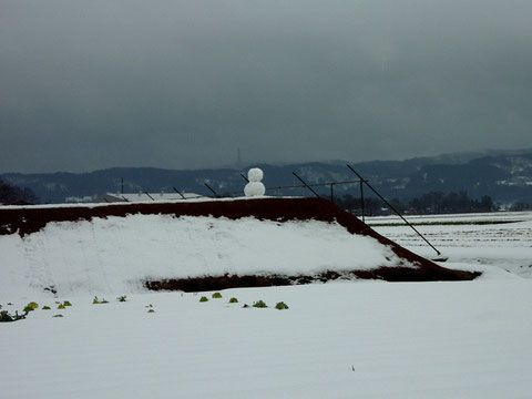 写ッセジュニア大賞 No.51204 雪だるま 金子裕紀