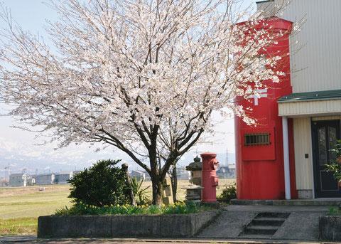 優秀賞(前島)No.60283 ポストの家 滝沢 敏雄