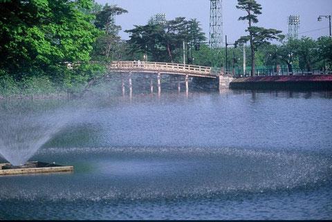 噴水 初夏の陽に噴水の水がまぶしい
