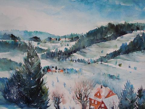""""""" Fabenmagie"""" - Winterwunderland Toggenburg 2013"""