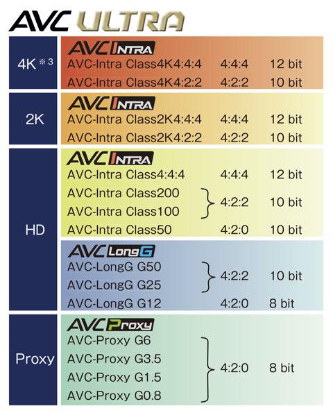 P2HD AVCINTRA AVC-I100 AVClongG50 AVClongG25 P2card AVC intra200 intra100
