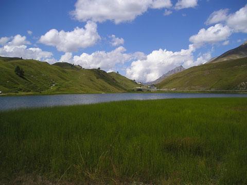 Lago del Colle della Maddalena (Foto P. Caroni)