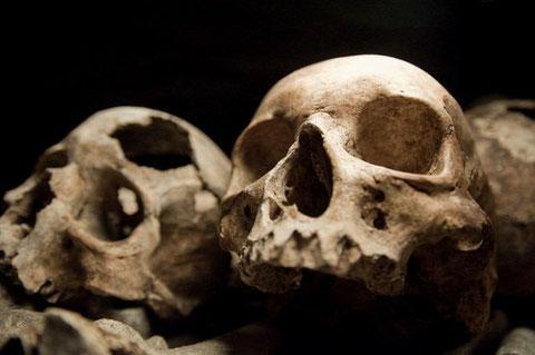 Lo desconcertante es que los marcadores genéticos de esta primera cultura paneuropea fueron reemplazados de repente hace 5.000 años. Algo de gran envergadura debió ocurrir, pero por ahora se desconoce qué fue.