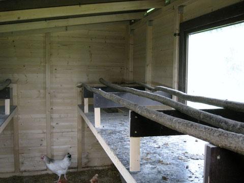Mobiler Hühnerstall 4