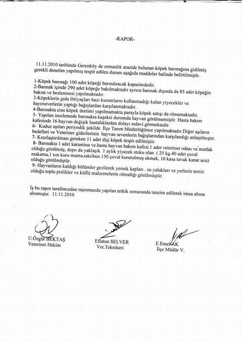 Foca Tierheim, Tierhilfe Foca, Nilgün Karsilayan