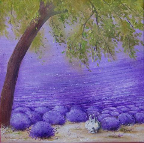 Entspannung im Lavendelfeld 40 x 40 cm