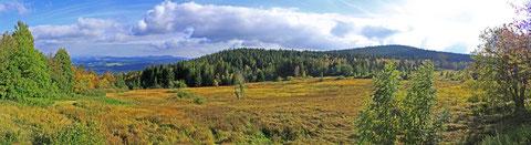 Panoramabild von der Oberbreitenau
