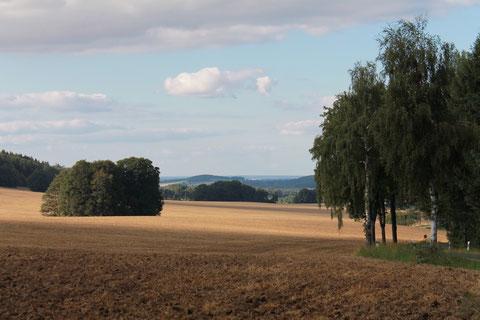 Landschaft bei Herwigsdorf