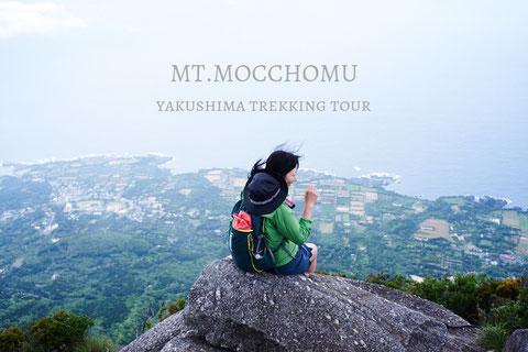 モッチョム岳ツアー,屋久島ガイド,おすすめガイドツアー,トレッキング