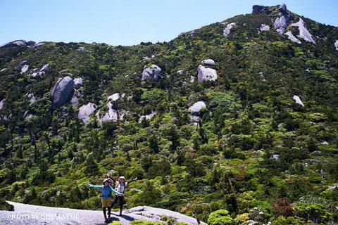 標高1831mの黒味岳を背景に,屋久島,宮之浦岳縦走ツアー