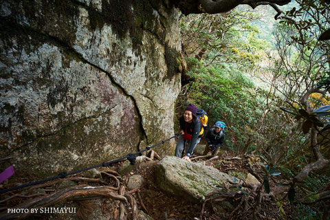 ロープで岩場をよじ登る(太忠岳ガイドツアー)