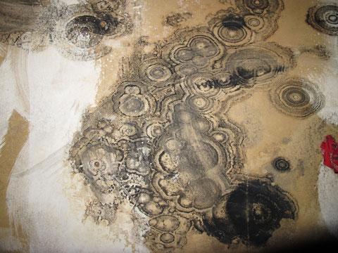 Die Natur als Künstlerin - Schimmelkreise an der Deckenunterseite eines Badezimmers