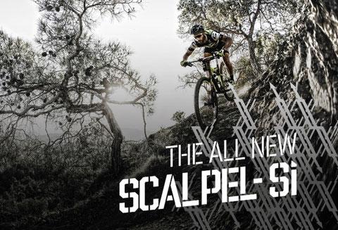 Cannondale bikes von bike+style. Scalpel, Trigger, Jekyl bei uns am Lager.
