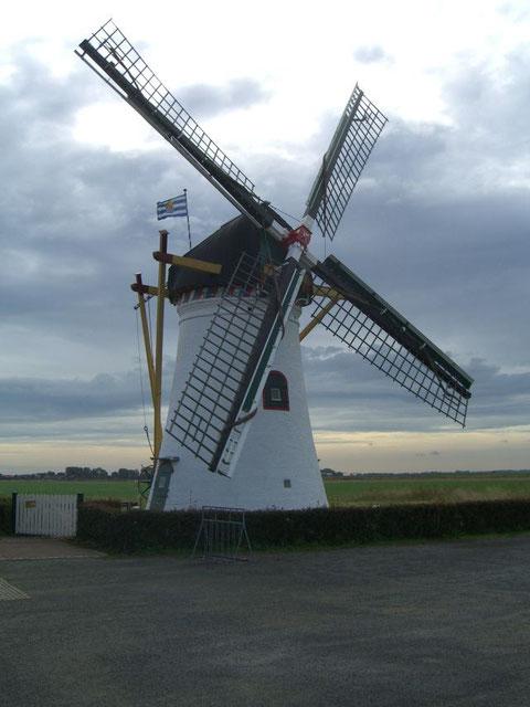 Scharendijke Mühle