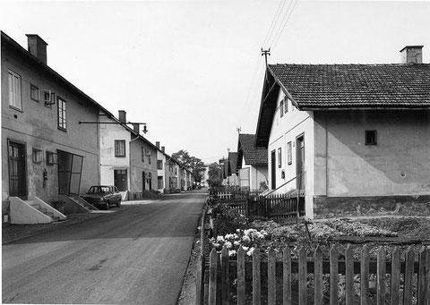 Die kleine Siedlung am Rande der Stadt. Foto: Manfred Walter