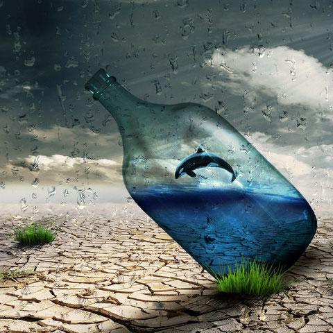 Fotoretusche: Eine Flasche mitten in der Wüste. In der Flasche befindet sich ein winziges Meer mit einem Wal.
