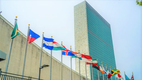 社会との繋がりを増やして全体の幸福を最大化 国連