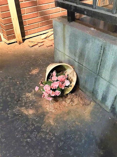 倒れた植木鉢
