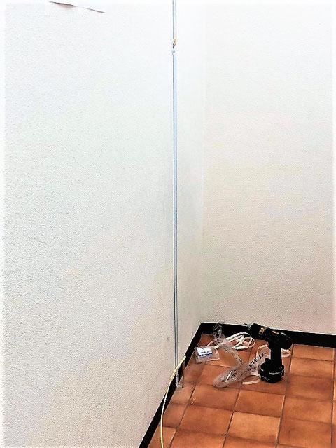 壁を這わせ壁