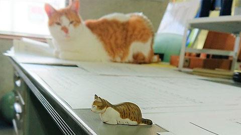 社員旅行中も広報課長に勤しんでいた弊猫