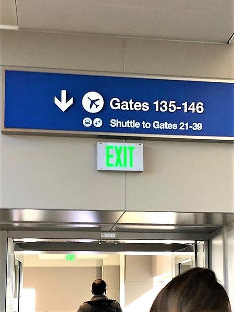空港内で壁付された緑文字EXITの誘導灯