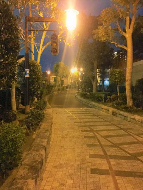 昔の信号がレトロ感を出している遊歩道