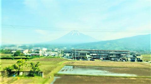 ヒトとは富士山を見ると写真を撮る生き物