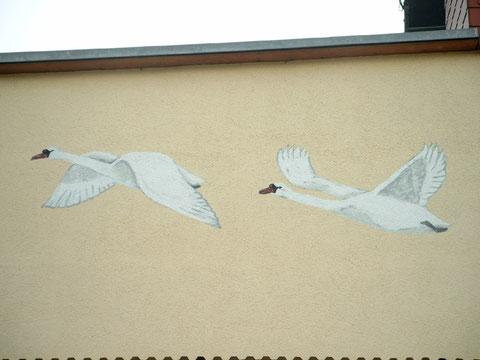 unsere fliegenden Schwäne an der Hinterfront des Hauses