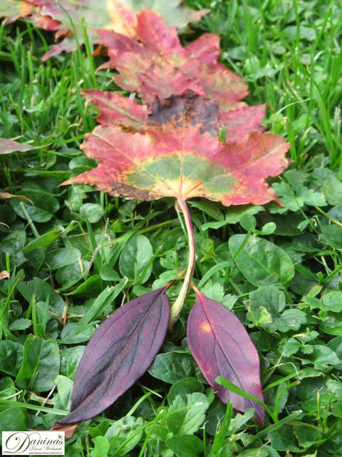 Landart mit bunten Blättern