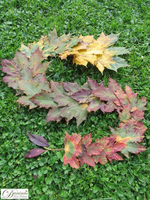 Bunte Blätter Schlange - Landart im Garten