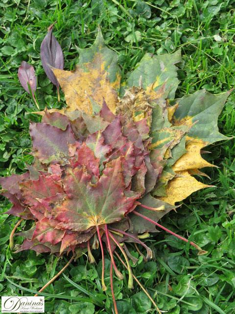 Herbstblätter Landart im Garten