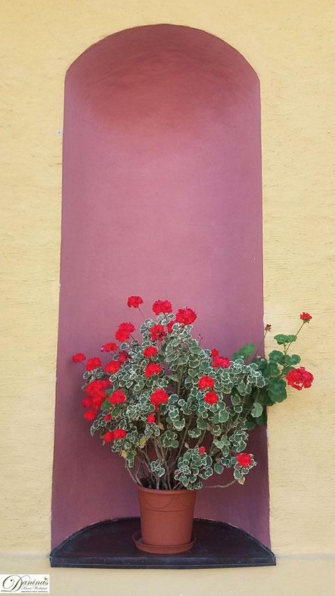 Salzburg - Schloss Hellbrunn Mauernische mit Blumen