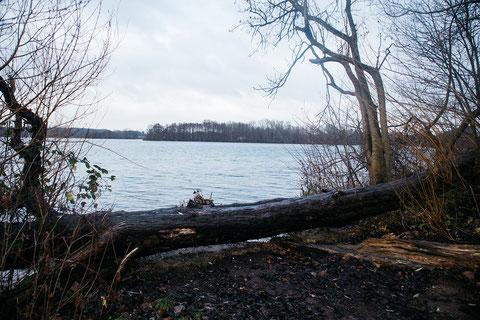 Ein schöner Pausenplatz direkt am See, dazu gibts auch hier einen Cache zu finden.