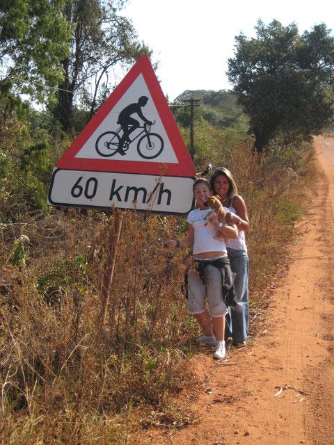 Occhio! Qui i ciclisti (colpa forse dei leopardi) viaggiano a 60 all'ora.