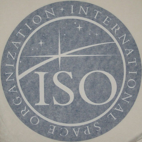 7 inch large ISO window decal