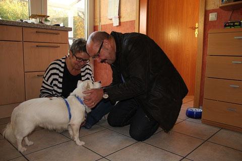 Sammy (Tango) bekam eine liebevolle Familie in Ringe.