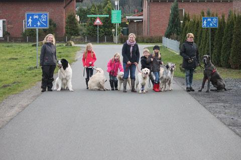Gehorsame Hunde beim Jahresabschluss Spaziergang :-)