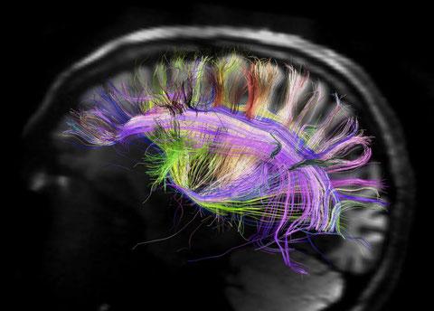Science Moderne Confiance Enseignement Formateur Formation Cognition