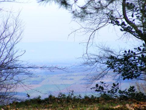 La plaine d'Alsace et la ligne bleue de la Forêt Noire